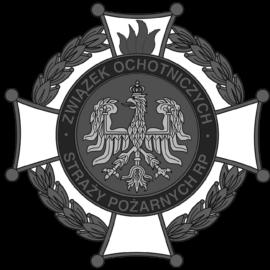 XVII Pielgrzymka Strażaków – Kraków