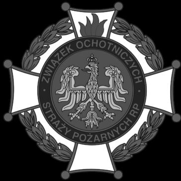 Przetarg – OSP w Opolu Sławicach