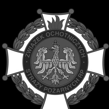 Wyjazdowe posiedzenie Zarządu Oddziału Powiatowego Związku OSP Rzeczypospolitej Polskiej powiatu kluczborskiego w Sali OSP w Wołczynie